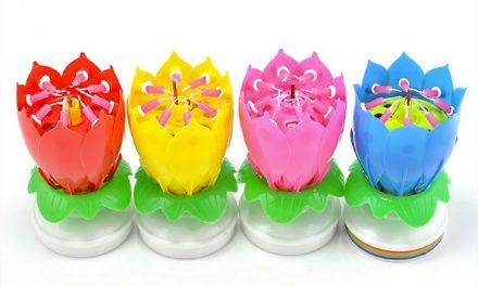 Idée d'achat: Bougie d'anniversaire musicale en forme de tulipe
